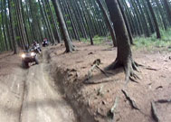 Dere Tepe Duzzz - ATV Safari - ATV Riding & Nature Tours - Carpathians @ Romania